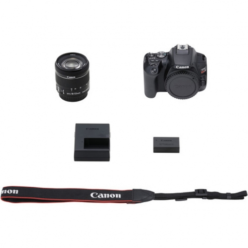 Canon EOS 250D with EF-S 18-55mm f/4-5.6 IS STM kit