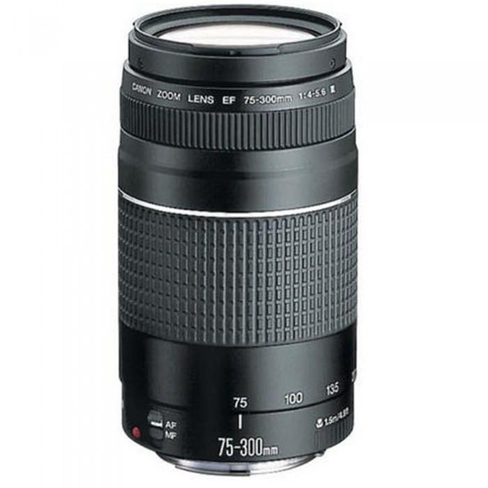 Canon EF 75-300mm III Lens
