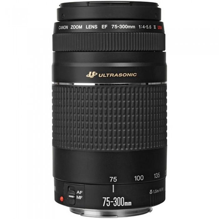 Canon EF 75-300mm III USM Lens
